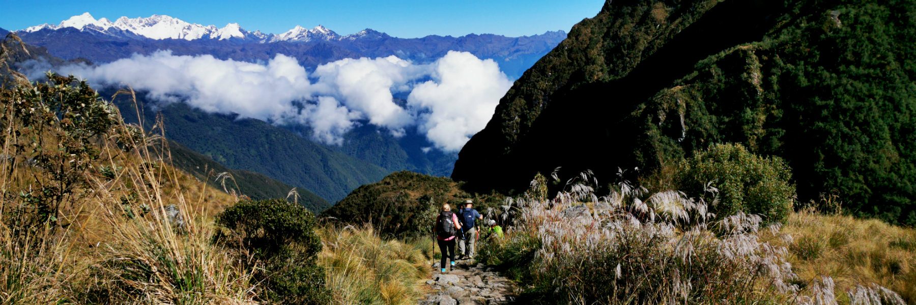 Inca Trail Expeditions Blog